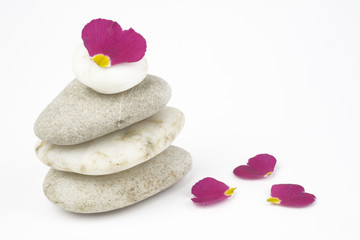 wellness and spa: flowers,pebbles stack, zen still life, isolate