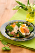 salad with spinach,egg,ham