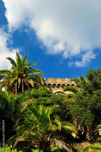 castle of hyeres behind palm trees