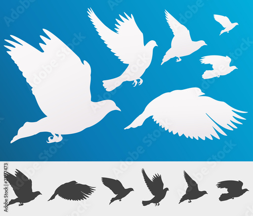 Graceful flying birds silhouettes for your design - isolated