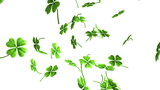 Falling shamrock leaves Saint Patrick's day background