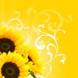 floral design and sunflowers sun and flower decor border