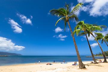 ハレイワビーチ(Haleiwa Beach)