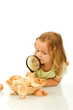 Little girl studying a basketful of chicks