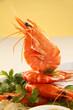 Standing Shrimp