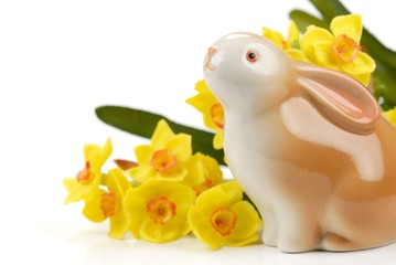 Easter bunny and daffodil