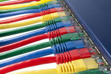 Multi colored ethernet network cables connected to a router poster