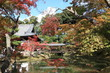 Kyoto: Kodaiji temple in autumn