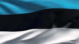Creased Estonia flag in wind with seams and wrinkle poster
