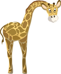 Funny giraffe illustration