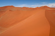 dune sea of the Namib desert