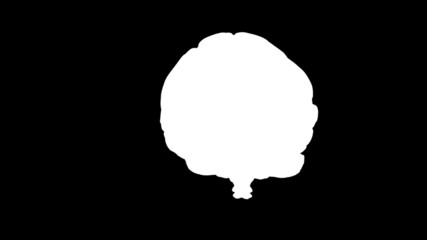 Brain Spin