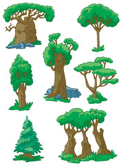 Trees(baobab, sequoia, acacia, poplar, oak, fur-tree, maple)