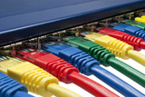 Multi color ethernet plugs connected to a router or switch poster