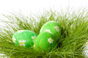 Painted easter eggs in grass