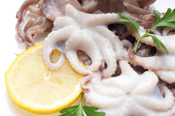 octopus with lemon close up