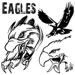 vector illustration eagle tattoo set