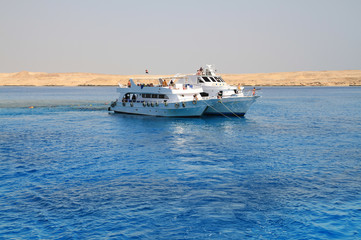 Snorkeling from the boat on Red Sea