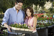couple choosing plants at nursery