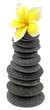 fleur jaune frangipanier sur pyramide de galets, fond blanc