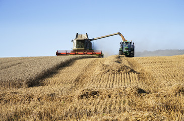 Combine and tractor harvesting crop