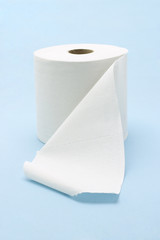 White toilet roll