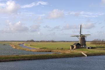 Dutch island Texel