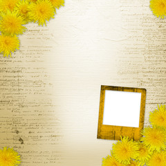 Writing abstract background  with bunch of dandelions