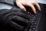 Computer theft with hands on laptop keyboard poster