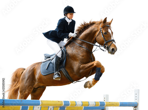 Fototapeta Young girl jumping with sorrel horse - isolated on white