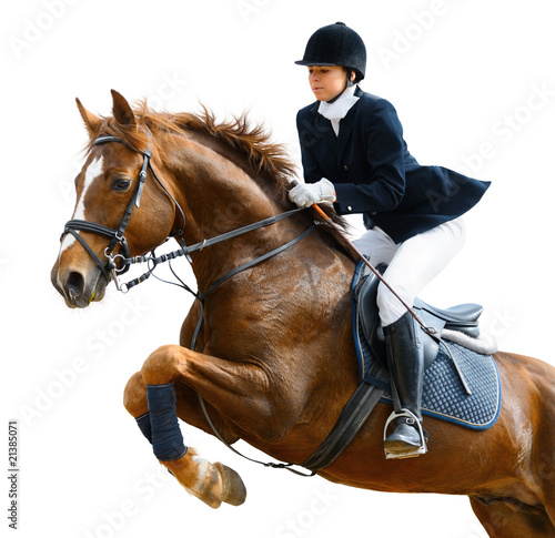 Poster Paardensport Young girl jumping with sorrel horse - isolated on white