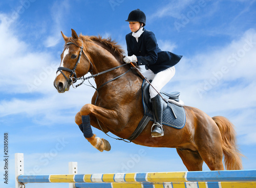 Equestrian jumper - Young girl jumping with sorrel horse - 21385088