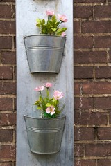 Pink flowers in zinc buckets on red brick wall
