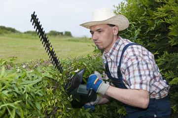 Gartenarbeit, Mann schneidet Hecke