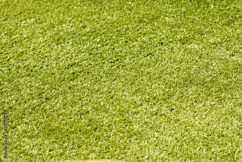 Green grass close-up background