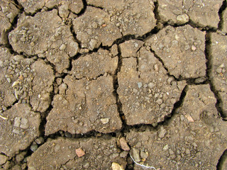A background image of cracked earth texture