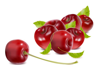 Photo-realistic vector. Ripe cherries with leaves.