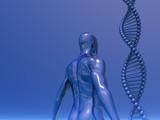genetic poster