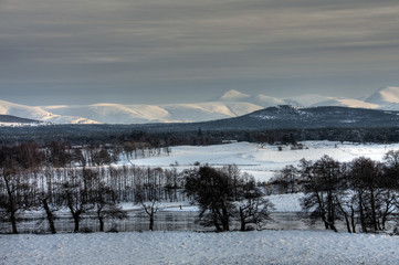 The Spey River in winter