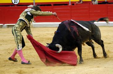 Corrida de toros 1