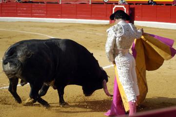 Corrida de toros 053