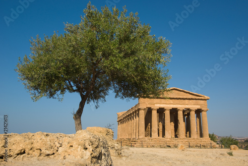 doric temple of Concord in the valley of temples and olive tree