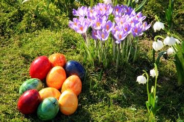 Ostereier, Krokusse, Märzbecher, Frühlingswies