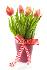 Cheerful vase with tulips