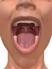 Blick in den Mund