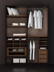 Inside the modern closet 3d rendering