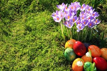 Ostereier, Krokusse, Märzbecher, Frühlingswiese,Moos
