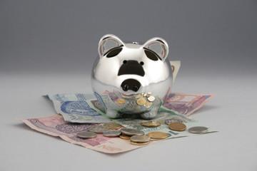 Świnka skarbonka pieniadze EURO DOLAR