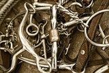 Horse Bits, Tack Leather & Rope (Sepia)