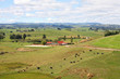 New Zealand countryside in Wanganui region